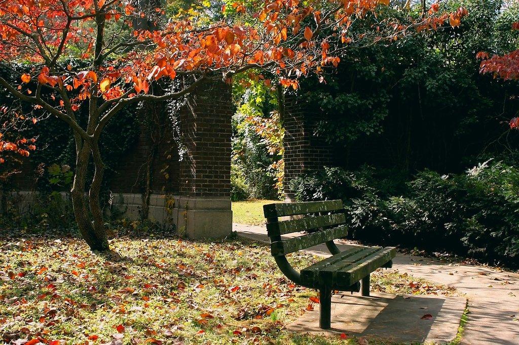 2012-10-20-0057.jpg